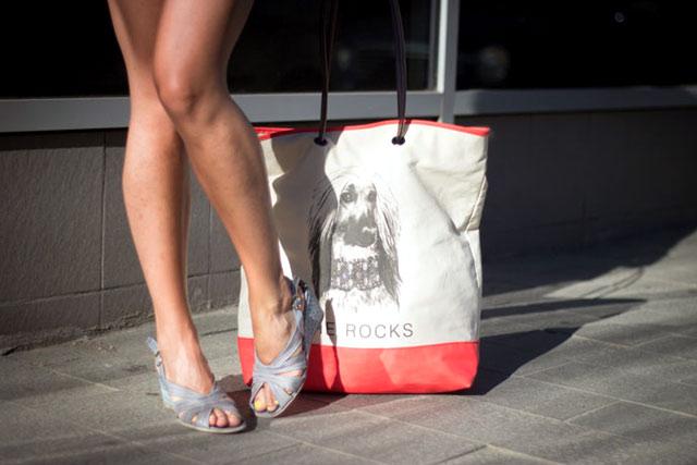 shoes-bag