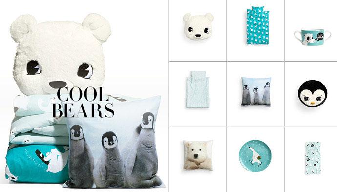cool-bears